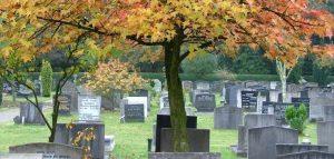 begrafenisondernemer zwolle